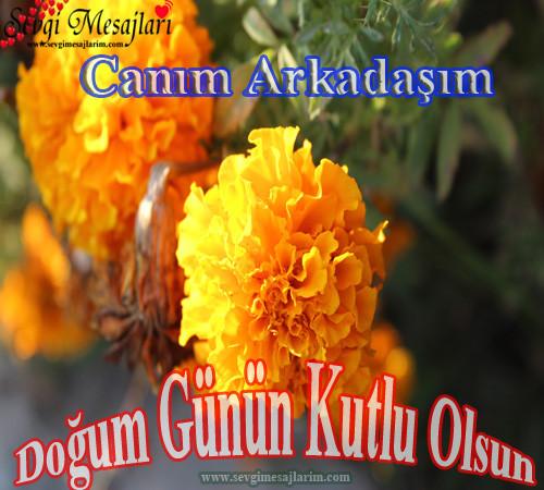 arkadasa-dogum-gunu-mesajlari