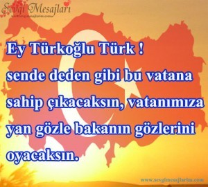 turklerle-ilgili-sozler