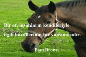 At İle İlgili Sözler