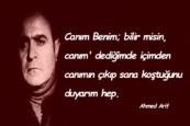 Ahmed Arif Sözleri