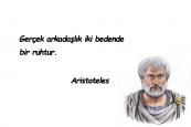 Aristoteles Sözleri