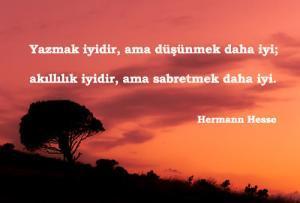 Hermann Hesse Sözleri