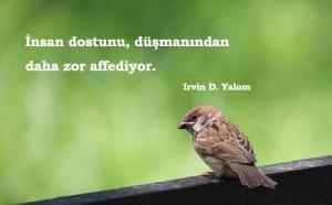 Irvin D. Yalom Sözleri