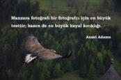 Ünlü Fotoğrafçı Sözleri