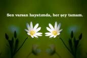 Whatsapp Durum Sözleri Aşk